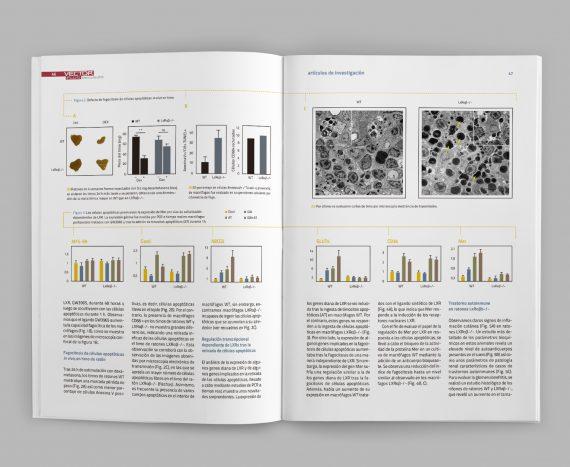 sergiohp, diseño y maquetación revista Vector Plus